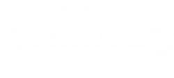 Campus Gigantes Basket Lover